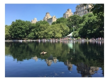 central_park-nyc0810